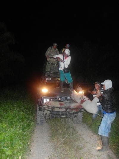 Kesibukan para kru berburu saat tengah malam di hutan Ipuh, Bengkulu.