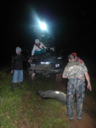 Para kru berburu tampak sibuk mengurus hasil buruan para hunter di tengah malam.
